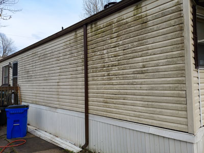 Vinyl Siding Cleaning before